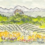 Languedoc Countryside